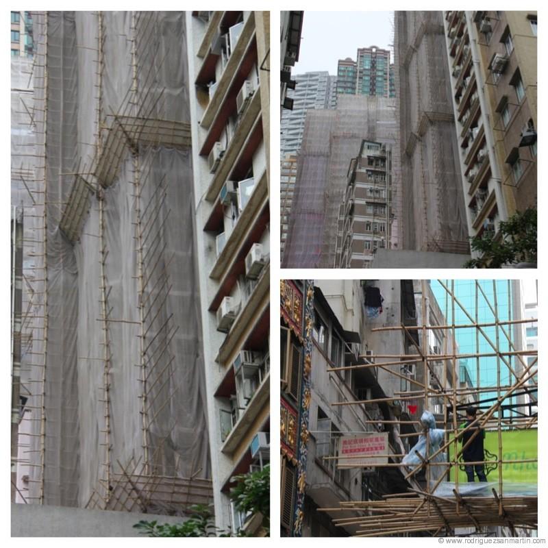 rascacielos-bambu