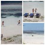 Tanzania: Zanzibar despedida al sol